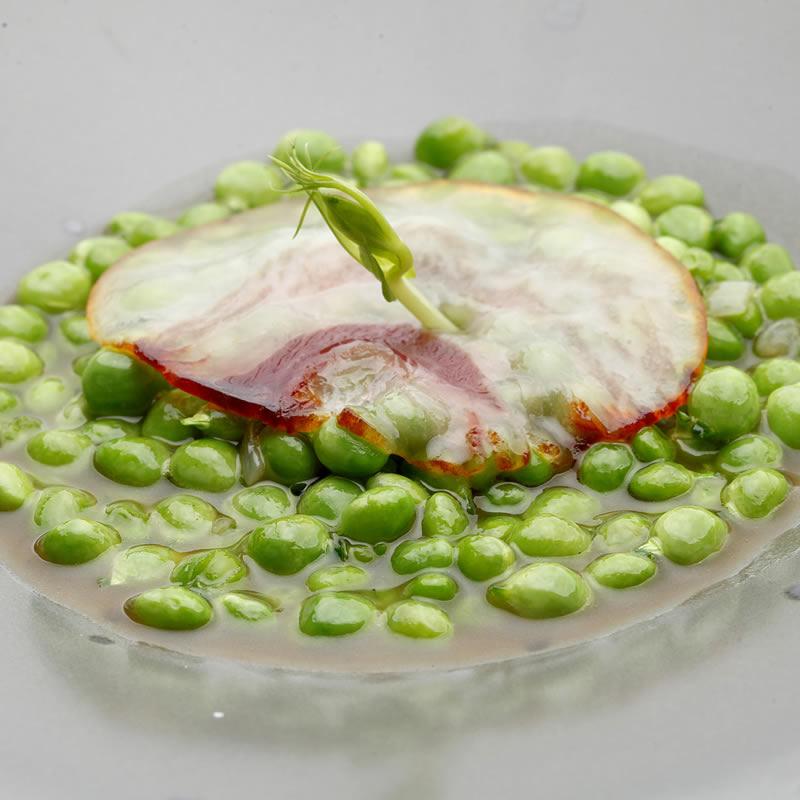 Arduino-Vannucchi-gastronomia-14